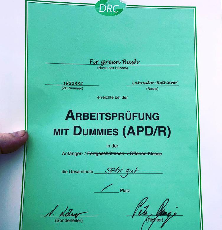 15.08.19 - APD/R - Dummy A im DRC